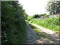 TG4810 : Footpath past Decoy Farm by Evelyn Simak