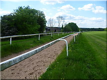 TQ2157 : Horse ride near Epsom Racecourse by Marathon