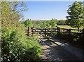 SX3471 : Entrance to Trefursdon Farm by Derek Harper