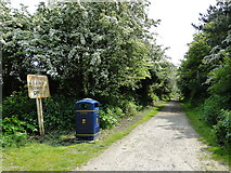 TG5201 : Warren Road, off Links Road by Adrian S Pye