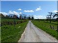 SU8315 : Lane leading to Staple Ash Farm by Chris Gunns