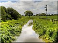 SJ4864 : River Gowy at Foulk Stapleford by David Dixon