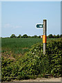 TM4488 : Byway sign off Ellough Road by Adrian Cable
