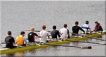 J3371 : Rowing, River Lagan, Stranmillis, Belfast - May 2014(2) by Albert Bridge