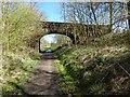 NS4886 : Cycle path near Gaidrew by Lairich Rig