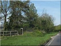 SU8016 : Footpath sign in North Marden by David Smith