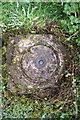 SK8125 : Ordnance Survey Fundamental Bench Mark, Bescaby Lane by Roger Templeman