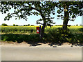 TM4687 : Red House Farm Postbox by Adrian Cable