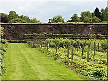 SJ7481 : Walled Garden, Tatton Park by David Dixon