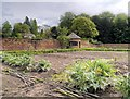 SJ7481 : Vegetable Garden at Tatton Park by David Dixon