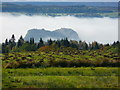 NS4177 : Dumbarton Rock from Square Wood by Matt McFadzean