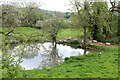 SO7238 : Duck Pond by Bob Embleton