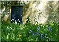 NZ0284 : Blue Door by David Clark