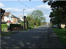 TL4196 : Gaul Road, Little London by JThomas