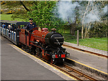 NY1700 : Dalegarth Station by Peter Trimming