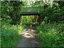 SU9946 : Road bridge over  cycle path by Alan Hunt