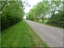 TQ1661 : Access road to Byhurst farm by Marathon