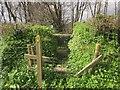SX8058 : Stile near Higher Bowden by Derek Harper