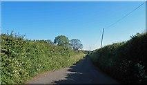 ST6288 : Mumbley's Lane near Alveston Down by Steve  Fareham