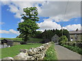 NY9028 : The lane to Bowlees visitor centre. by steven ruffles