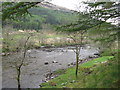 NN2737 : Across the River Orchy by M J Richardson