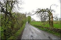 NS5379 : The B821 near Carbeth Loch by Tim Heaton
