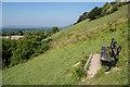 TQ2352 : Juniper Hill by Ian Capper