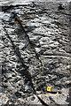 B9233 : Falcarragh Pelite by Anne Burgess