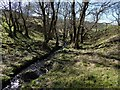 NS5281 : A burn beside the West Highland Way by Lairich Rig