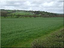 SK2947 : Farmland off Wirksworth Road by JThomas