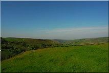 SK0167 : Pasture at Axe Edge Green Farm by John Winder