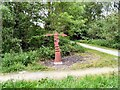 SJ9594 : Sustrans Signpost at Swain's Valley by Gerald England