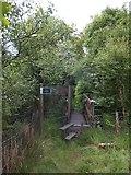 SX6196 : Footbridge on the Devonshire Heartland Way by David Smith