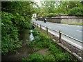 SU0052 : Russell Mill & Strawberry Hill Walk [53] by Christine Johnstone