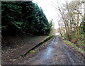 SO0103 : Platform at the site of Abernant railway station, Aberdare by Jaggery