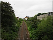 NT2774 : Railway passing under Marionville Road by Graham Robson