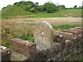 NY0420 : Railway Embankment & Parish Boundary Stone by Matthew Hatton