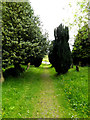 TM0974 : Path of St.Mary the Virgin Church by Adrian Cable