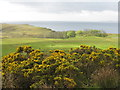 NR4963 : Gleann a' Coire Fliuch by M J Richardson