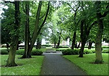 SK7953 : Tree lined walk in Newark churchyard by Andrew Hill
