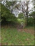 SX6397 : Gateway on the Devonshire Heartland Way near Aller by David Smith