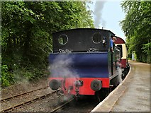 SD3787 : Lakeside and Haverthwaite Railway, Steam Locomotive at Lakeside Station by David Dixon