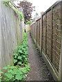 SE0636 : Footpath - Station Road by Betty Longbottom