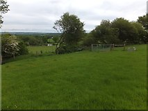 SX6497 : Devonshire Heartland Way near Halford by David Smith