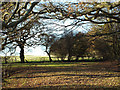 SP0476 : Corner of a field east of Wast Hill by Robin Stott