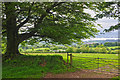 SS9229 : West Somerset : Countryside Scenery by Lewis Clarke