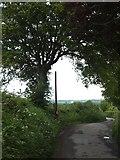 SX6598 : Road north of North Wyke by David Smith