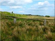 NS5876 : Craigmaddie Muir [3] by Robert Murray