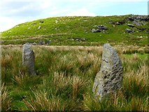 NS5876 : Craigmaddie Muir [4] by Robert Murray