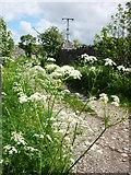 SE0064 : Intake Lane, Grassington by Carroll Pierce